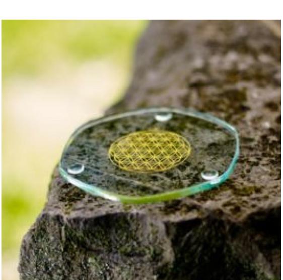 Plaque énergisante - Fleur de Vie - energyplate