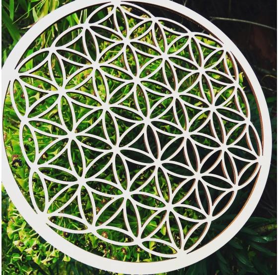 Fleur de Vie en bois - différents diamètres