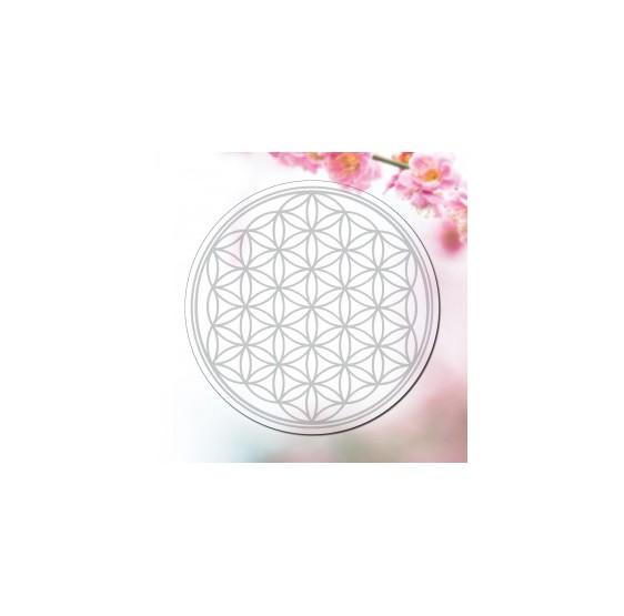 Fleur de vie  - ARGENT 4,5 cm - Transparent (1 par feuille)