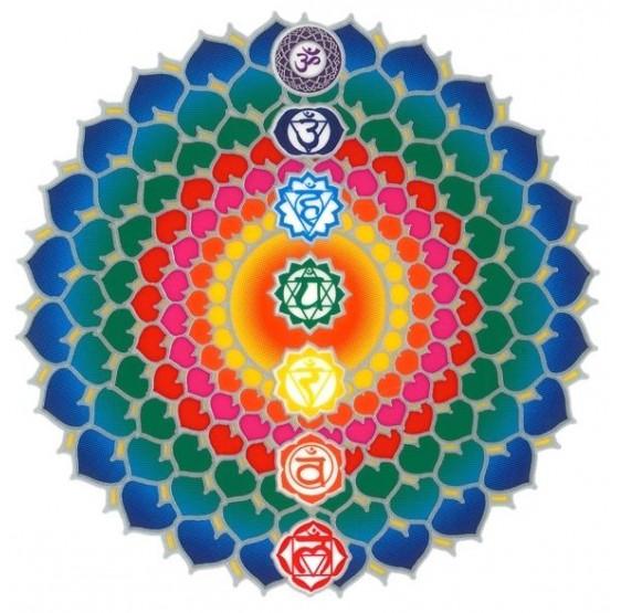 Chakras Lotus Healing en ligne - sunseal autocollant 14 cm