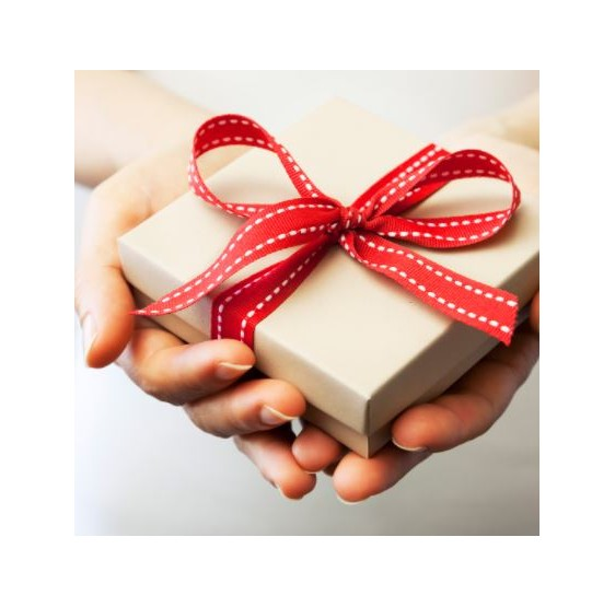 Cadeau offert à l'achat d'un filtre Berkey - Kit amorçage filtres